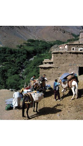 Toubkal. Alto Atlas. Marruecos. Digital CompeGps/Oziexplorer 1:40.000 5a ed 2017