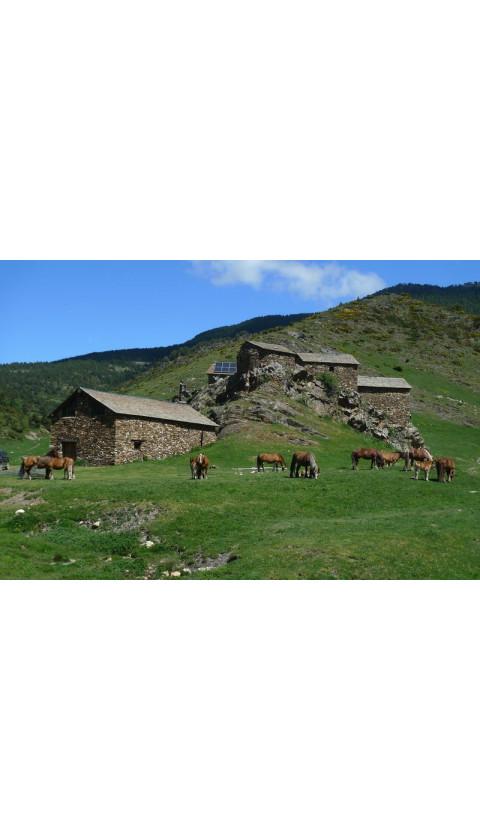 Salòria. Torreta de l'Orri. Terra Incògnita. Lo Cor de lo Pallars. Parc Natural Alt Pirineu. 28 Excursions. 50 Llocs imprescindi