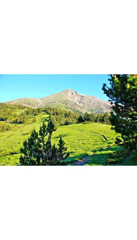 Caminos del exilio. Camprodon. Prats de Molló. Pirineus Orientals. Cuaderno de viaje + Mapa 1:25.000 1a ed